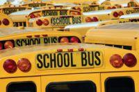 buses%20200.jpg