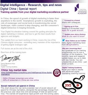 Digital Strategy data - Digital China February 2013